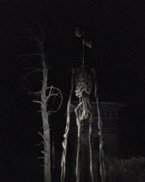 Siren Head - фото в лесу