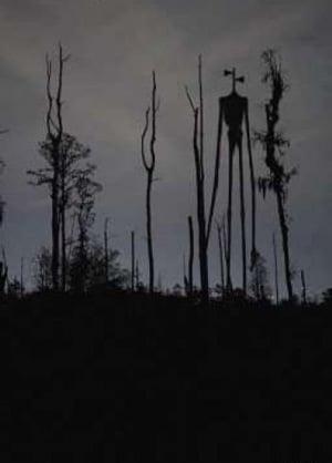 Сиреноголовый в лесу