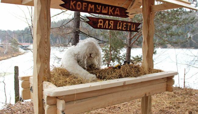 В Челябинске построили кормушку для Йети