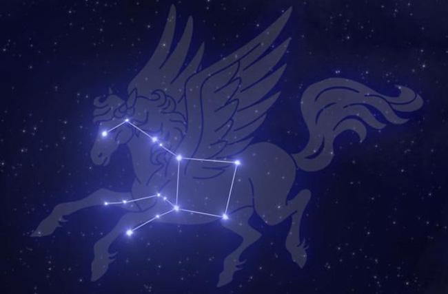 Созвездие «Pegas»