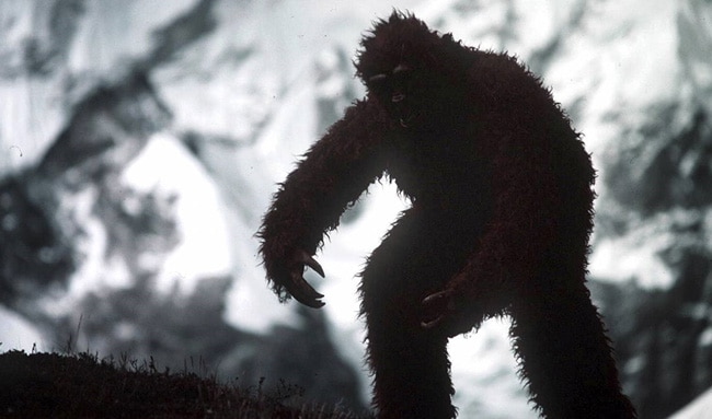 Снежный человек в лесу
