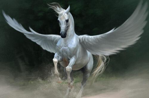 Пегас лошадь с крыльями - история и фото на mifistoria.info