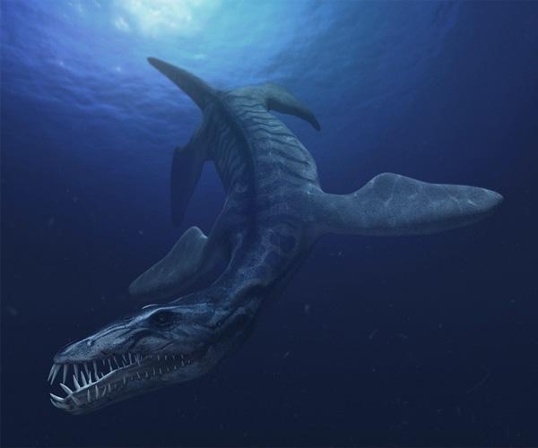Левиафаном мог быть даже древние морские существа, не дожившие до наших дней