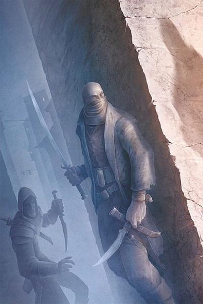 Ассасин – убийца, который отдаст свою жизнь ради выполнения приказа