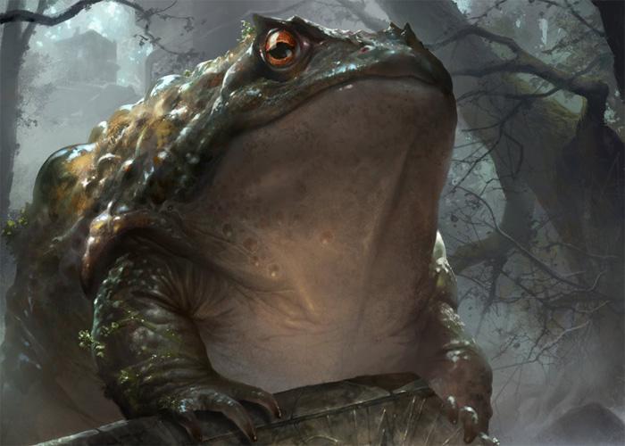Жаба - прислужник дьявола